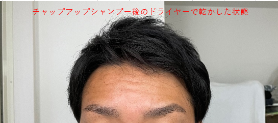 チャップアップシャンプーを使った時の髪の状態
